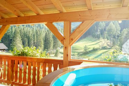 pool-terrasse-almchalet
